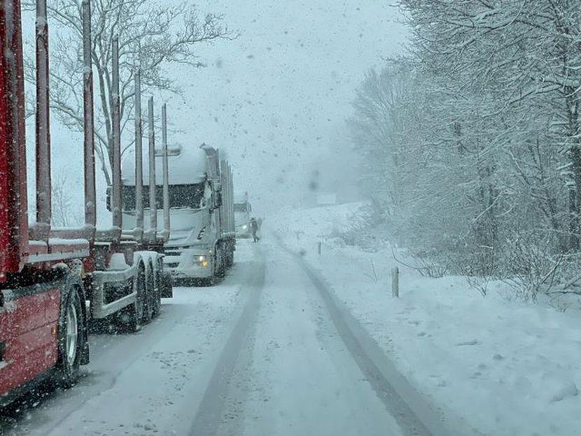 Април во Словенија никогаш не бил толку студен: Утрово температурата достигнала 20 степени под нулата