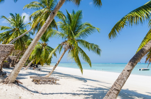 Многу сонуваат за живот на Бахамите – сега се појави идеална работа за нив, од платата ќе ви се заврти во умот