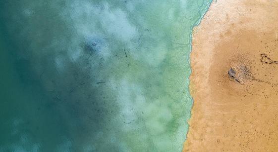Снимен неверојатен момент: Сурферите немале идеја околу што пливаат (ФОТО)
