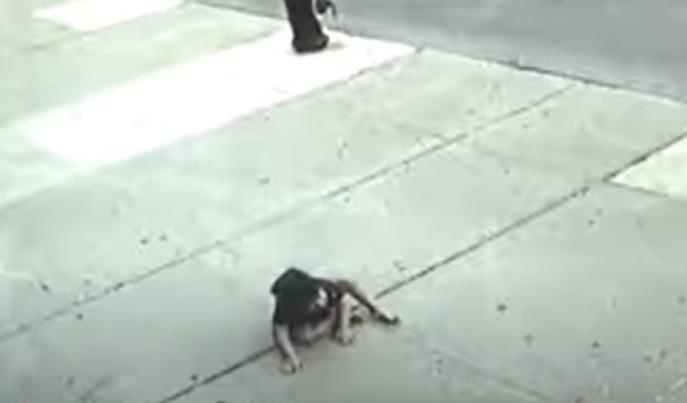 Три годишно дете падна од петти кат: Не плачеше, чудо е што е живо (ВИДЕО)