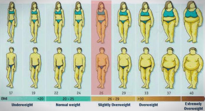 Откријте која е вашата идеална тежина- еве како