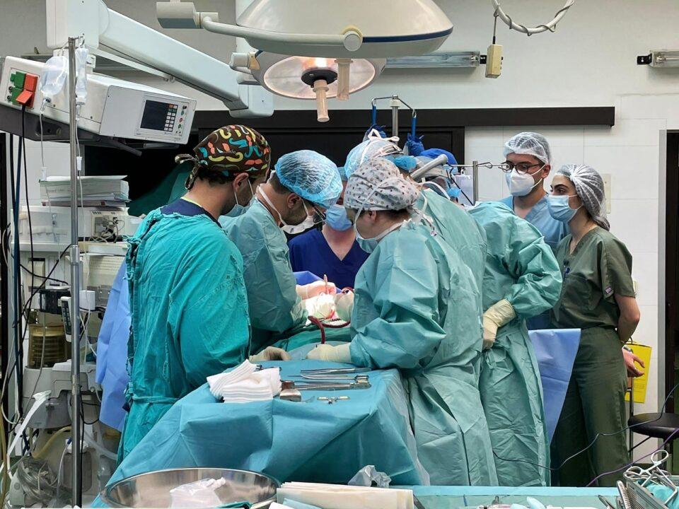 Хуманост во најтешки моменти: За една година трансплантирани четири срца и 10 бубрези
