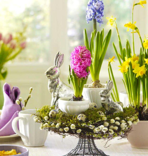 Дали знаете кој цвет е симбол на Велигден? Тој е омилен кај многумина a не знаат каква моќна порака испраќа тој