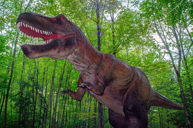 Верувале или не: Половина од Американците веруваат дека диносаурусите сѐ уште постојат