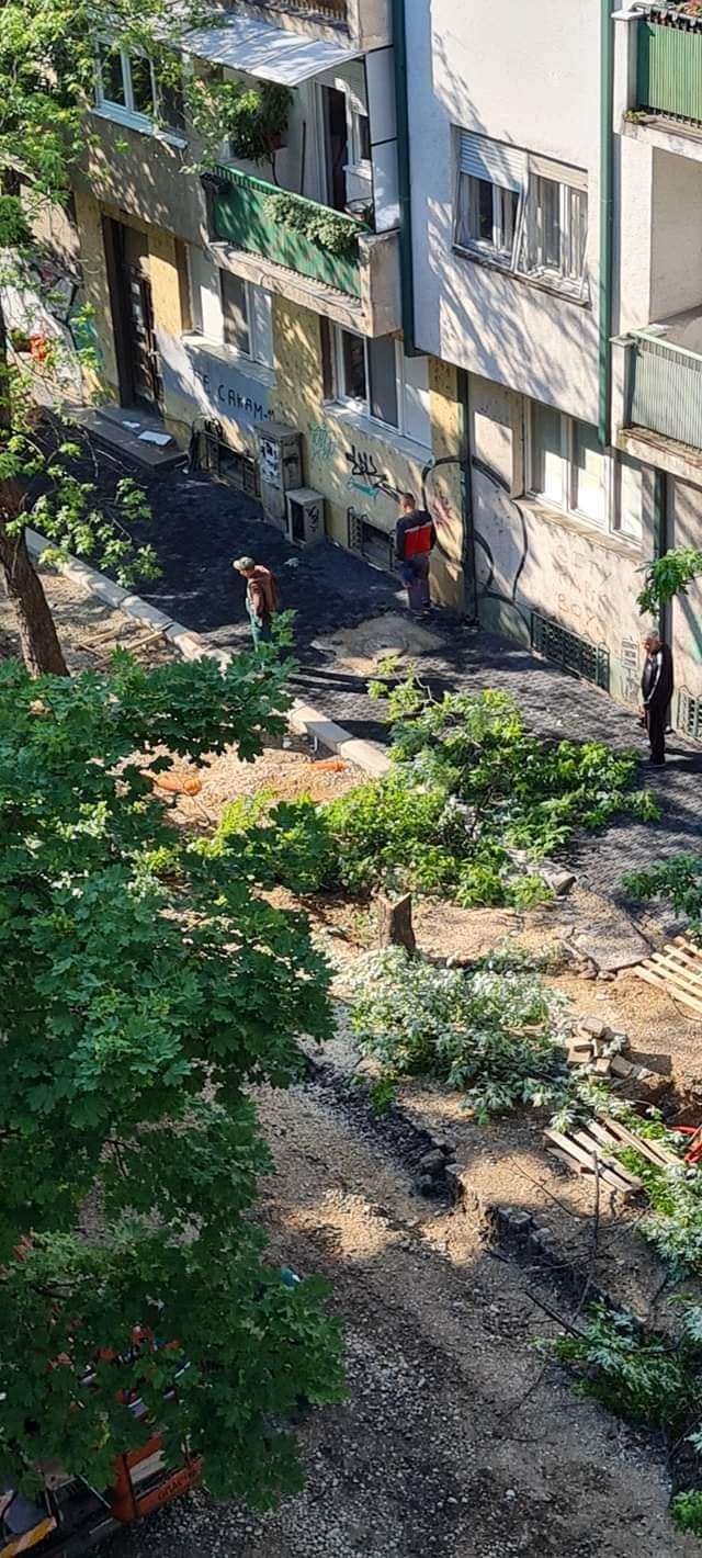 Нелоски: Една од подебелите сенки во Скопје каде што Петре, Српче и Зоки се испосликаа веќе ја нема