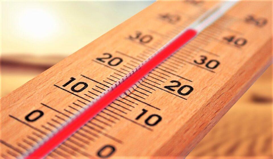 Топол бран, препораки за заштита од високите температури