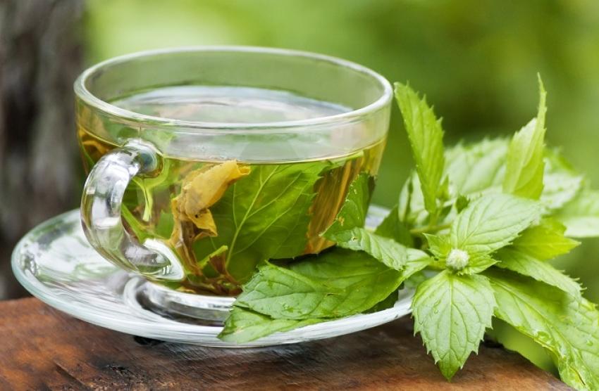 Чајот и маслото од нане нудат повеќе придобивки