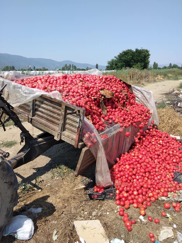 ЖАЛНО: Земјоделците на мака- родот наместо на пазар, им завршува на буниште (ФОТО)