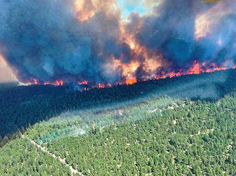 ФОТО: Шумски пожар во западна Канада, наредена итна евакуација