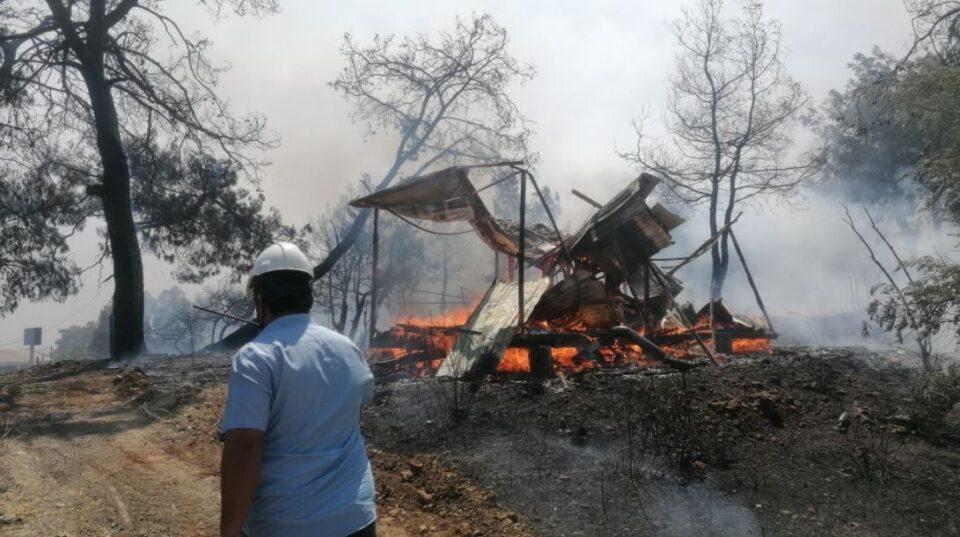 Над 400 повредени: Големите пожари во Турција однесоа и човечки животи
