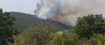"""Пожарот кај Кокино ставен под контрола, жаришта има во месноста """"Кокински дол"""""""