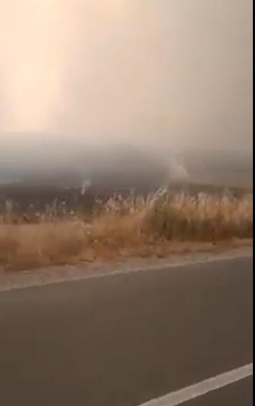 Во Малешевијата жителите со голи раце го гаснат огнот – хеликоптери цел ден ги лажат дека ќе пуштат (ВИДЕО)