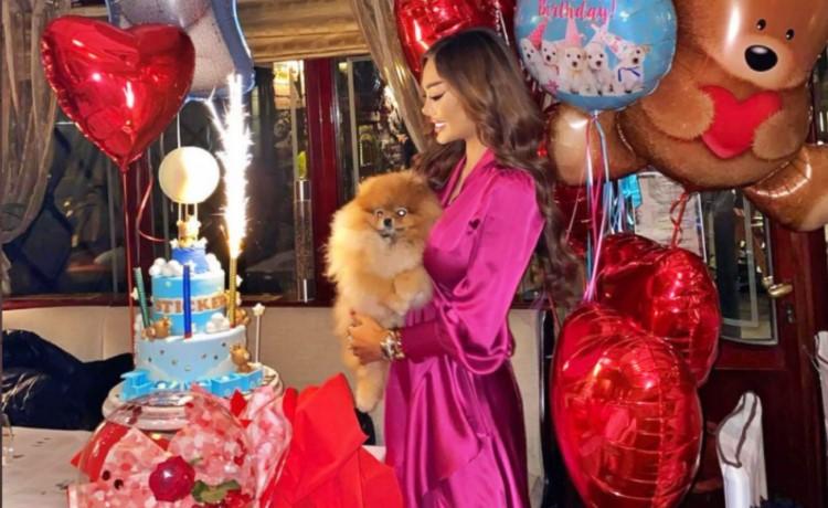 Слават родендени на кучиња со торти, свеќи и украси: Дали според вас ова е слатко или не е нормално?