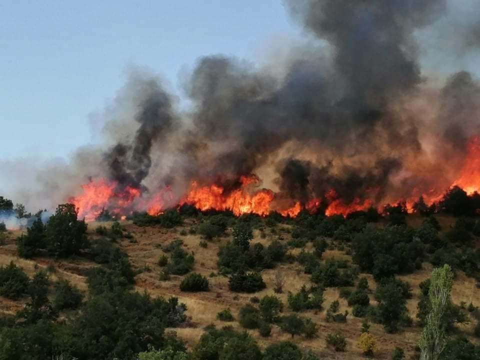 ДЕТАЛИ ДО 12 ЧАСОТ ЗА СИТЕ ПОЖАРИ: 14 куќи и училиште изгореа во Дренак, пожарот кај Пасјак е во дијаметар од 9 км