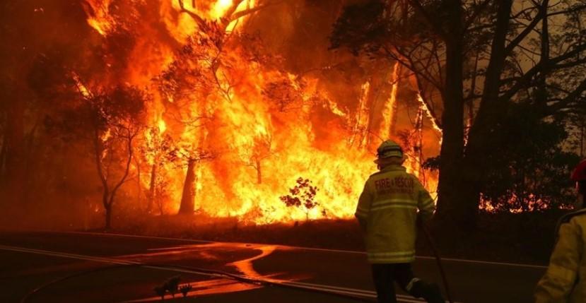 Во Грција продолжува борбата против пожарите