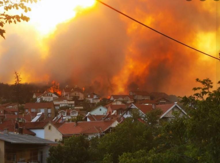 Цуцуловски за пожарите: Власта, а со неа и државата, се наоѓаат во ЦЕЛОСЕН КОЛАПС, а на најбезобразен начин се чаталат- никој од нив не помислувал на оставка