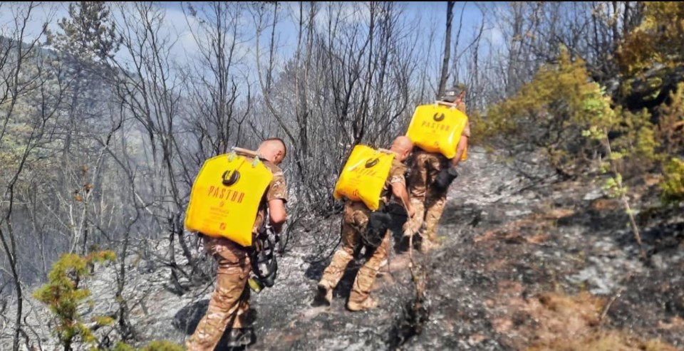 Изминатото деноноќие 450 полицајци гаснеле пожари низ Македонија, фатиле 4 лица кои ќе одговараат