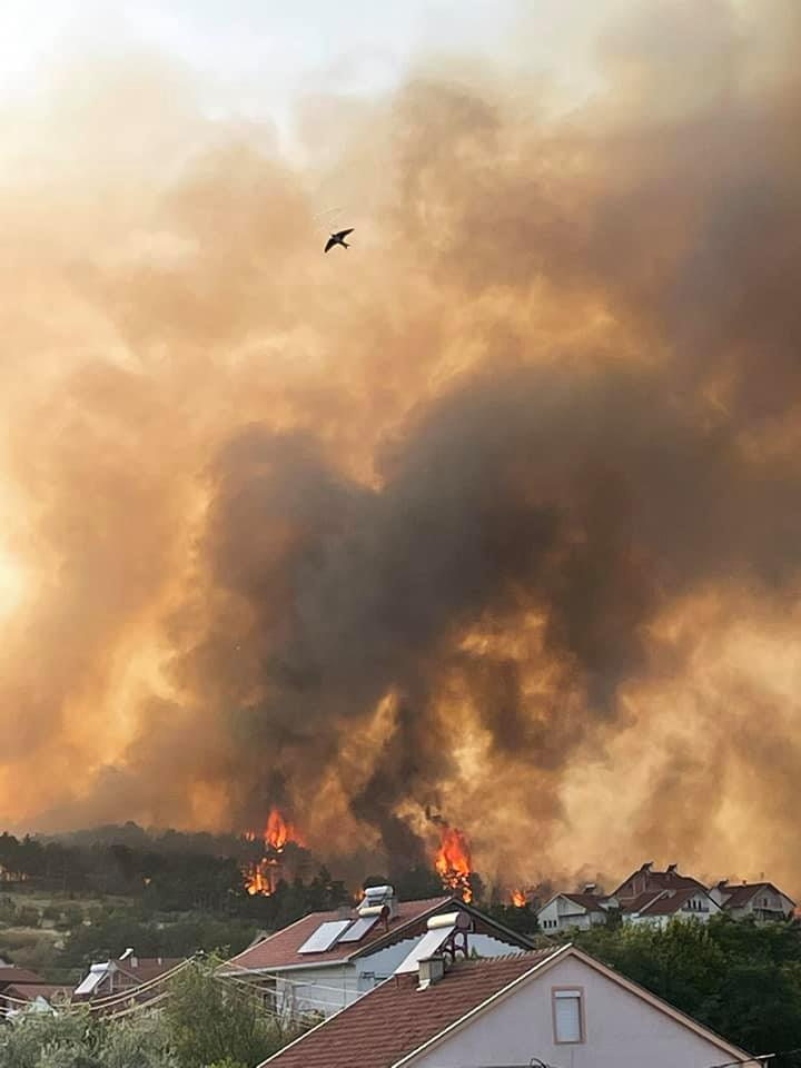 Ковачки до Пендаровски: Проверете си дали некој требало да земе провизија и колку- зошто е избркана странската фирма за сервисирање на авионите за гаснење на пожари?