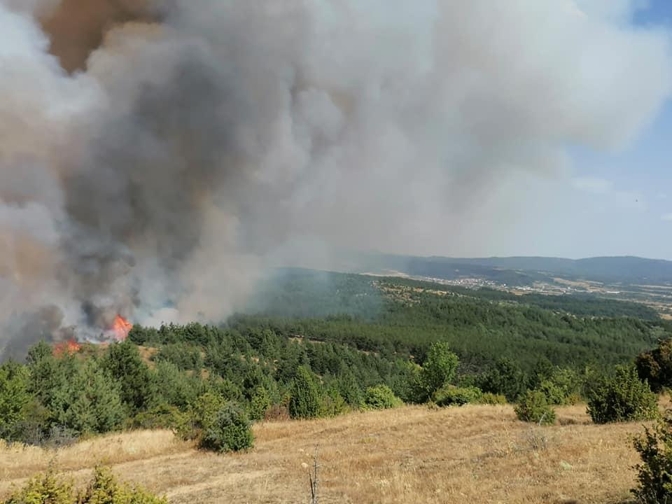 ВМРО-ДПМНЕ: Неспособноста на власта во справување со пожарите загрозува имоти и животи, оставки