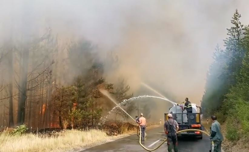 ВИДЕО: Активен пожарот кај Пасјак, изгореа 750 хектари борова шума – Пожарот кај Пехчево се шири кон селата