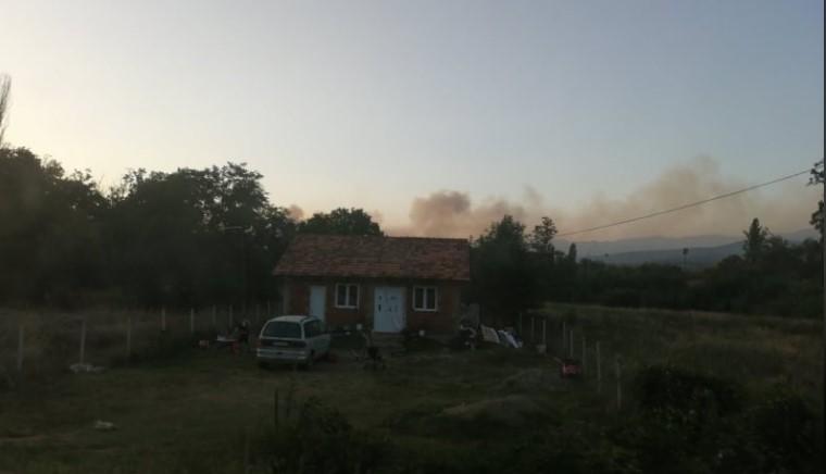 Густ чад надвисна над Ранковце, пожарот зафати големи површини (ФОТО)