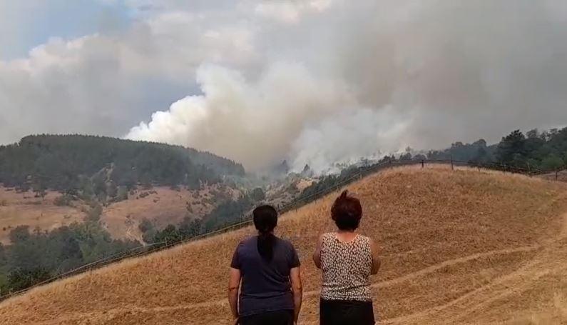 ВИДЕО: Пожарот на неколку метри од куќите во пехчевско Робово
