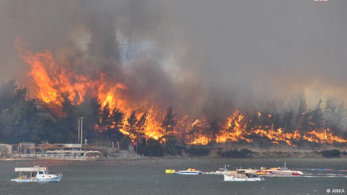 Ердоган: Шумските пожари во Турција се најтешките во историјата