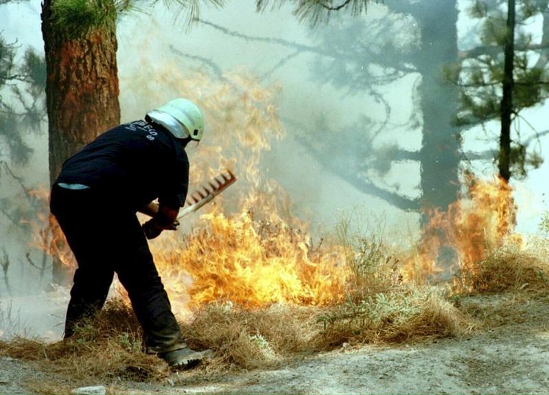 Во Шпанија 13 региони прогласени за зони на катастрофа поради пожарите
