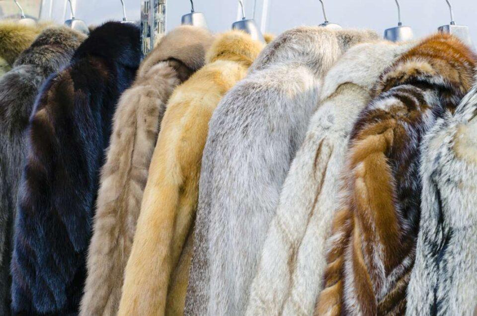 Најпознатите светски брендови за облека ќе го забранат крзното