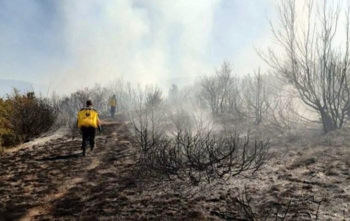 Пожар над струмичкото село Вељуса, 14 пожарникари се борат со огнот