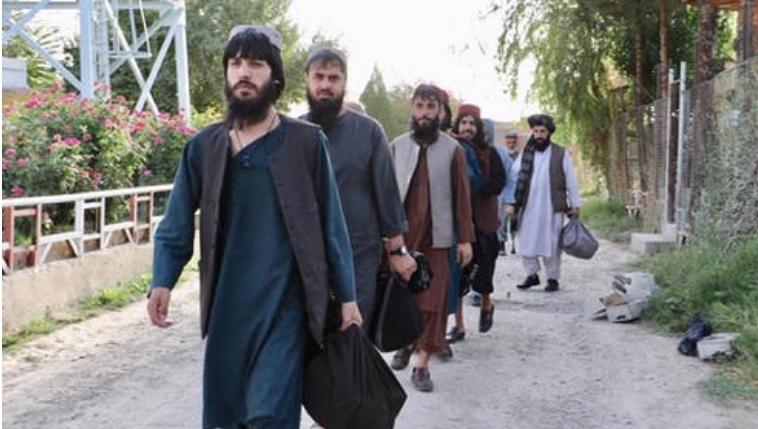 Талибанците отфрлаат соработка со САД во сузбивање екстремисти од ИД